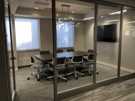 Acoustically Private Conference Room and Lighting Fixture